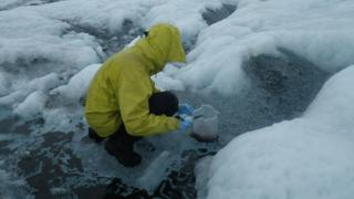 Scientists collecting water on the ice in 2014